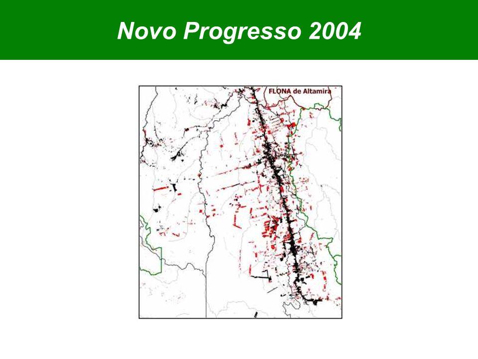 Novo Progresso 2004
