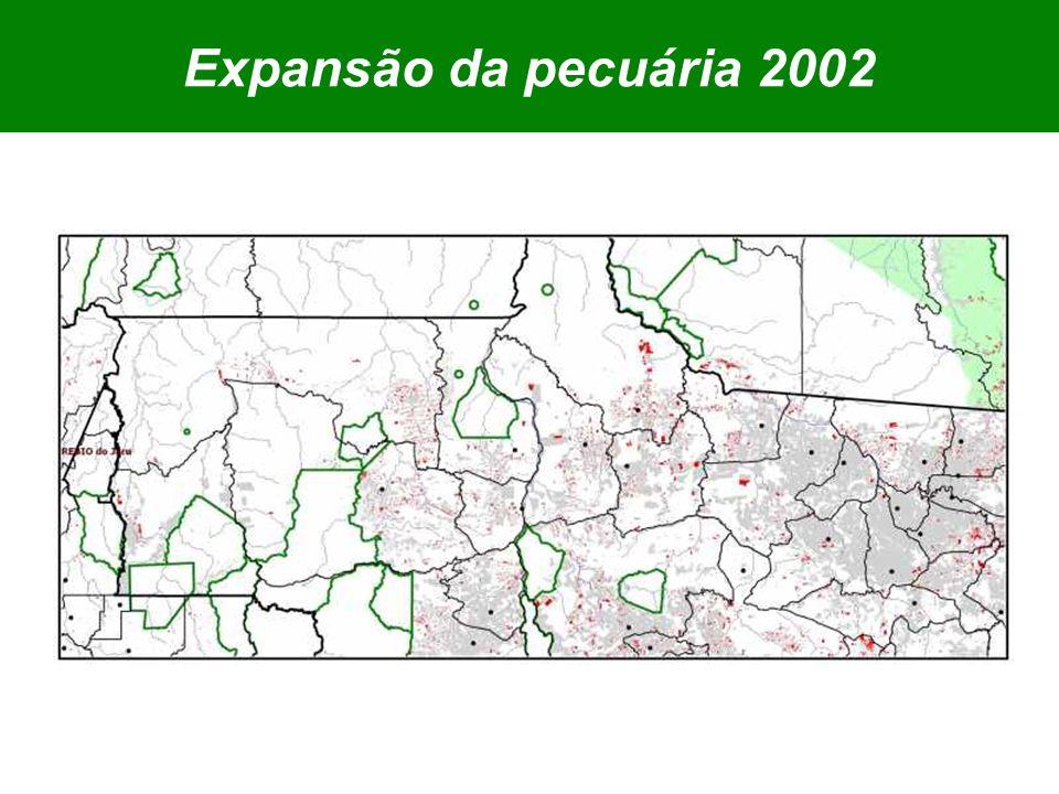 Expansão da pecuária 2002