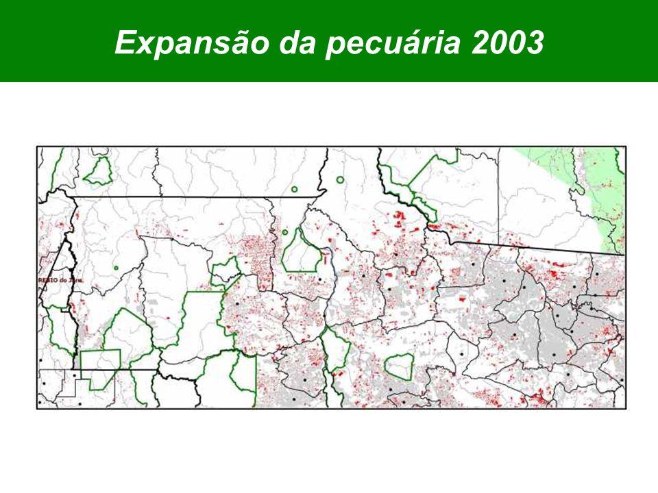 Expansão da pecuária 2003