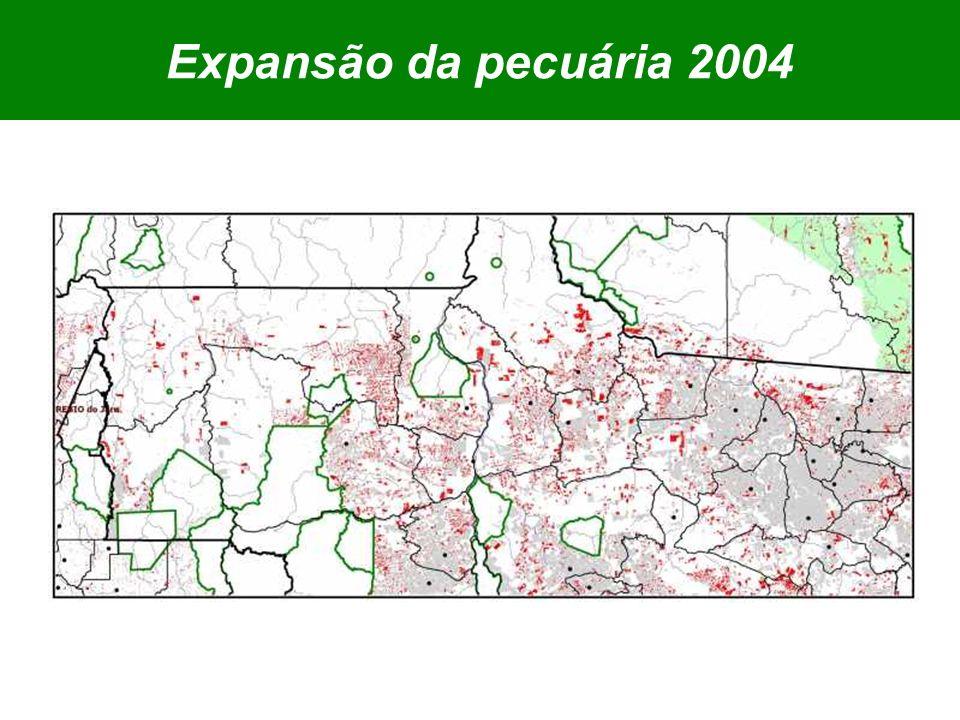Expansão da pecuária 2004