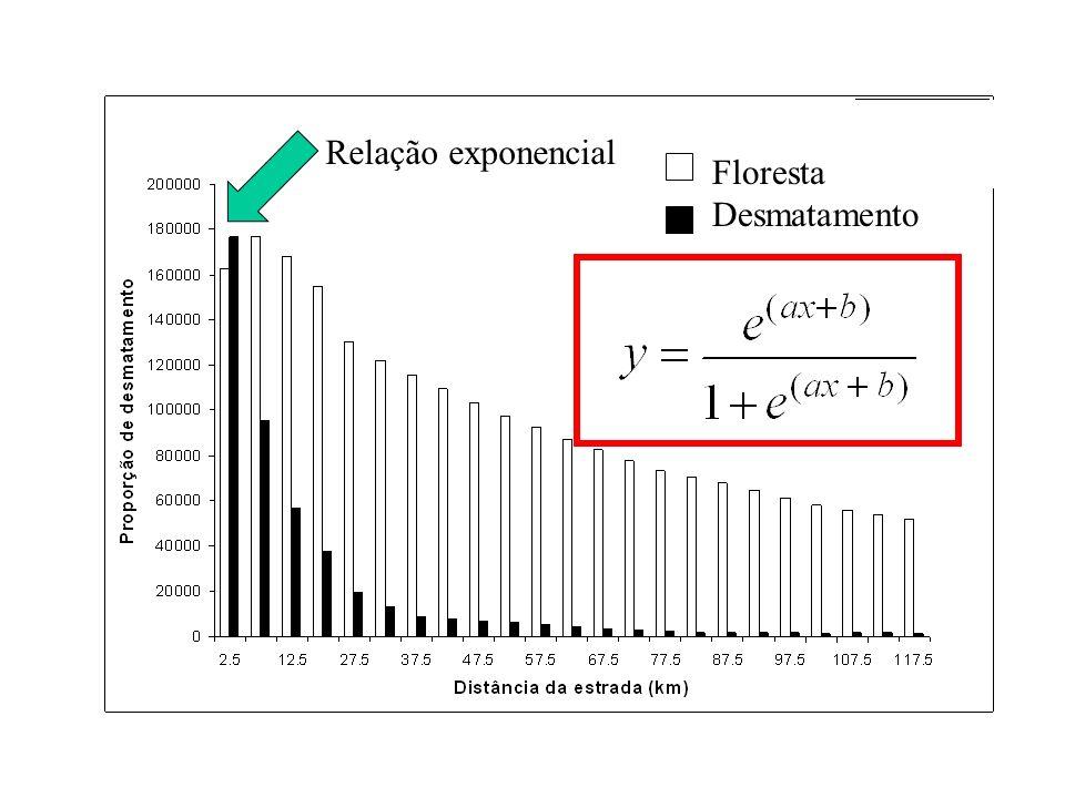 Floresta Desmatamento Relação exponencial