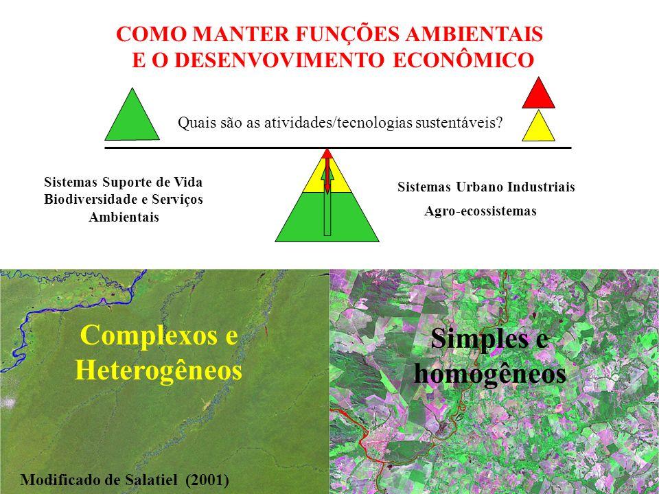 COMO MANTER FUNÇÕES AMBIENTAIS E O DESENVOVIMENTO ECONÔMICO Quais são as atividades/tecnologias sustentáveis.