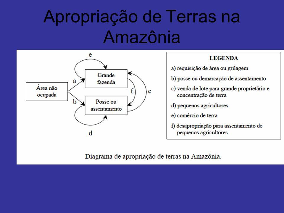 Apropriação de Terras na Amazônia