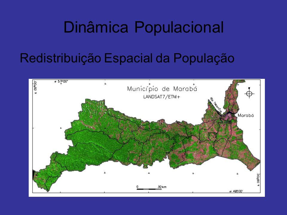 Dinâmica Populacional Redistribuição Espacial da População