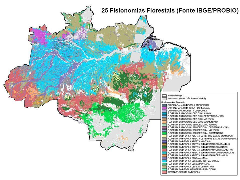 25 Fisionomias Florestais (Fonte IBGE/PROBIO)