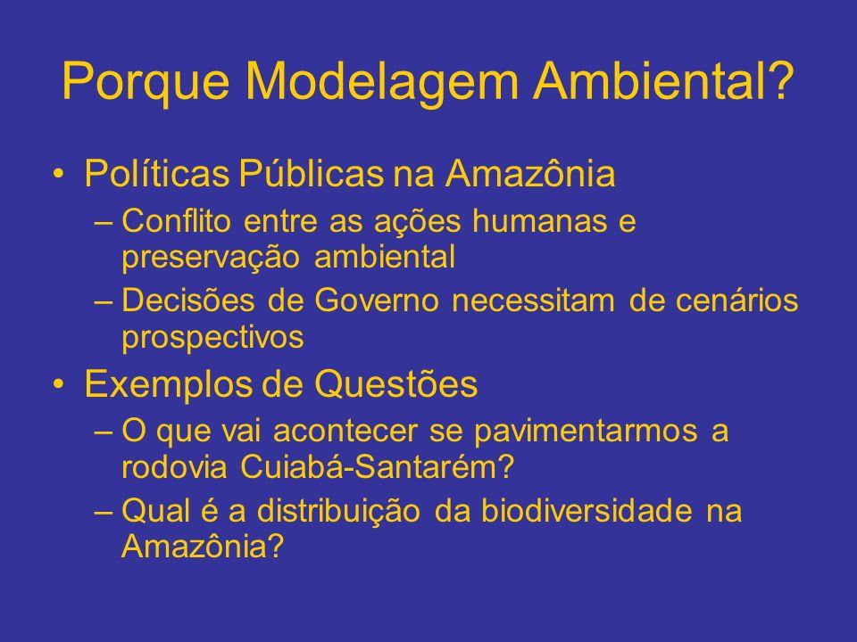 Porque Modelagem Ambiental? Políticas Públicas na Amazônia –Conflito entre as ações humanas e preservação ambiental –Decisões de Governo necessitam de