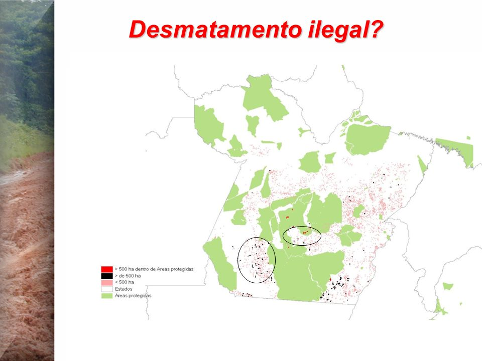 Desmatamento ilegal?