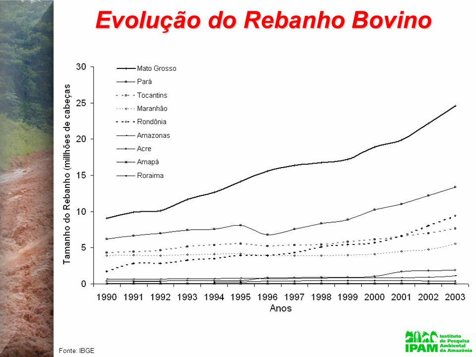 Evolução do Rebanho Bovino Fonte: IBGE