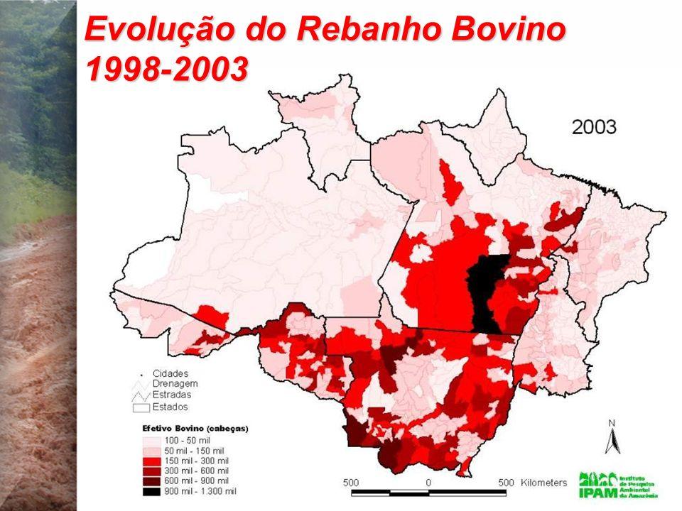 Evolução do Rebanho Bovino 1998-2003