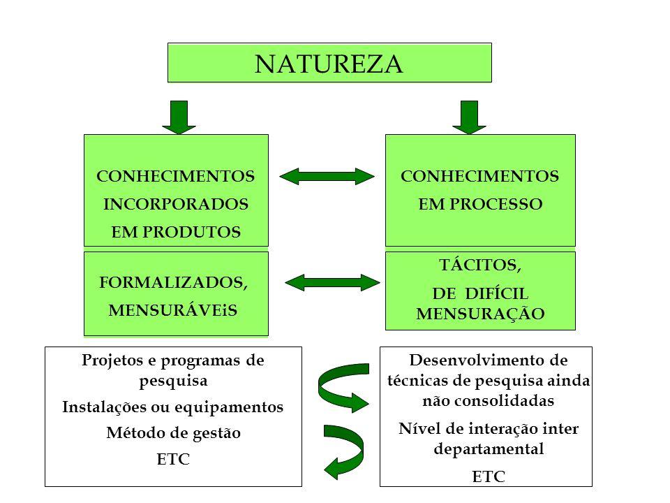 NATUREZA CONHECIMENTOS INCORPORADOS EM PRODUTOS CONHECIMENTOS EM PROCESSO FORMALIZADOS, MENSURÁVEiS TÁCITOS, DE DIFÍCIL MENSURAÇÃO Desenvolvimento de técnicas de pesquisa ainda não consolidadas Nível de interação inter departamental ETC Projetos e programas de pesquisa Instalações ou equipamentos Método de gestão ETC