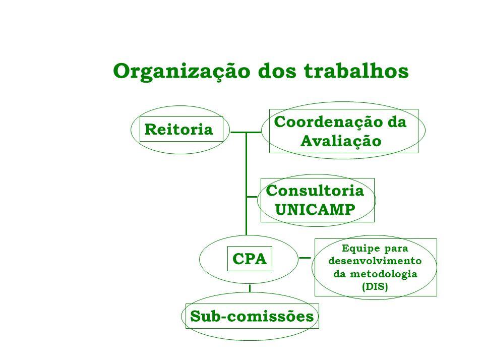 Organização dos trabalhos Reitoria Coordenação da Avaliação Consultoria UNICAMP CPA Sub-comissões Equipe para desenvolvimento da metodologia (DIS)