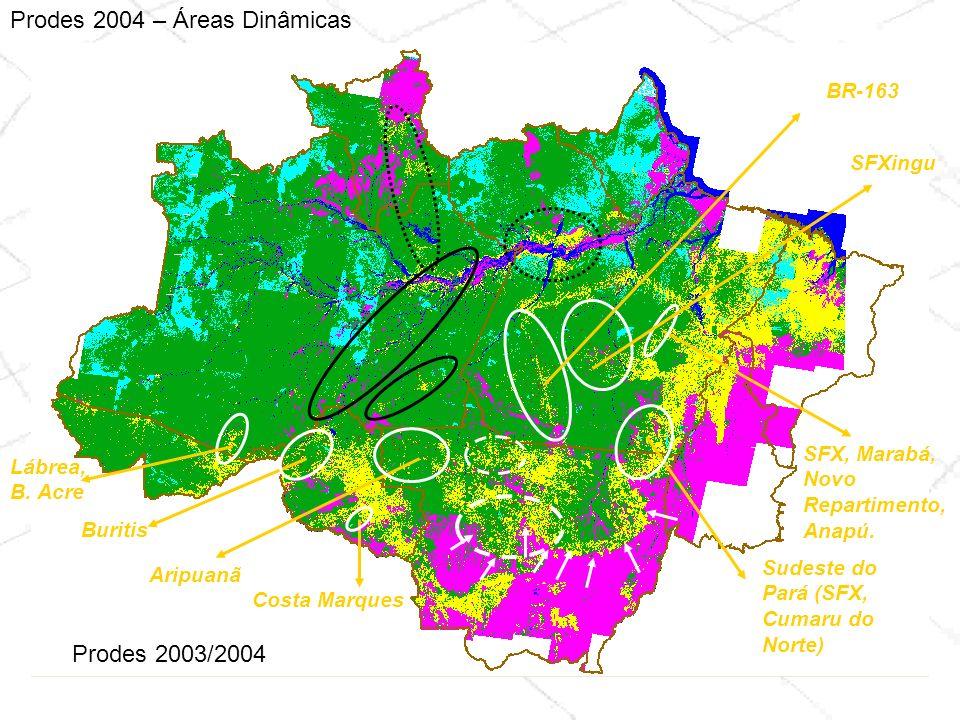 Prodes 2003/2004 Prodes 2004 – Áreas Dinâmicas Costa Marques Sudeste do Pará (SFX, Cumaru do Norte) SFX, Marabá, Novo Repartimento, Anapú. Buritis Ari