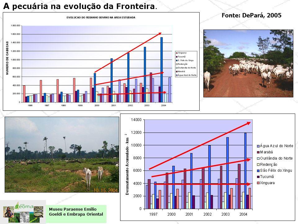 Fonte: DePará, 2005 A pecuária na evolução da Fronteira. Museu Paraense Emílio Goeldi e Embrapa Oriental