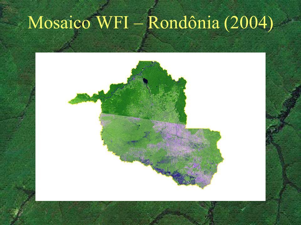 Mosaico WFI – Rondônia (2004)