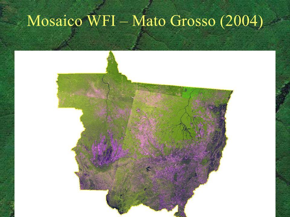 Mosaico WFI – Mato Grosso (2004)