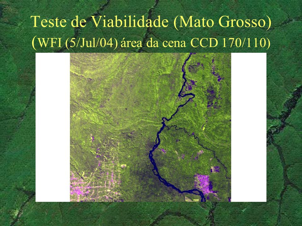 Teste de Viabilidade (Mato Grosso) ( WFI (5/Jul/04) área da cena CCD 170/110)