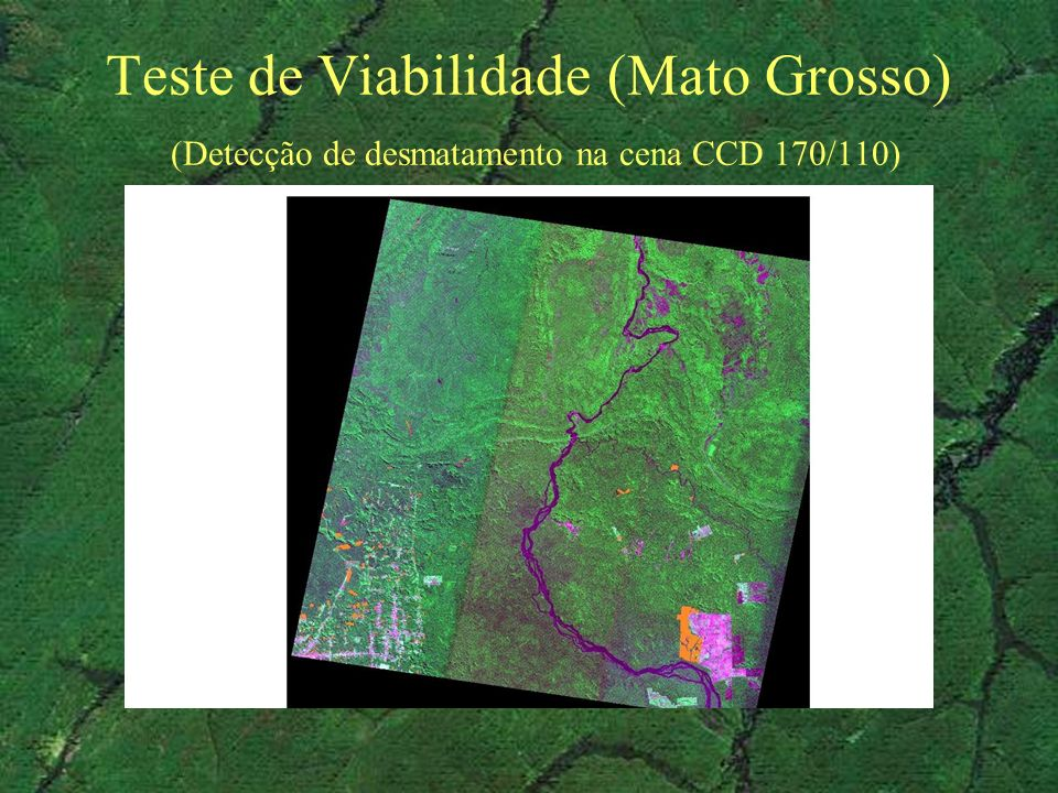 Teste de Viabilidade (Mato Grosso) (Detecção de desmatamento na cena CCD 170/110)