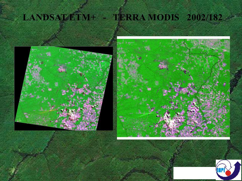 TERRA MODIS 2002/166 / PRODES 2001