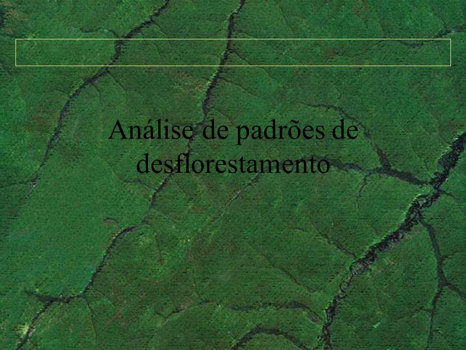 Análise de padrões de desflorestamento