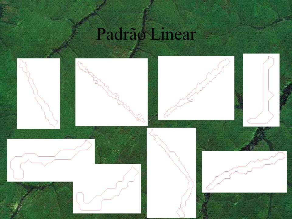 Padrão Linear
