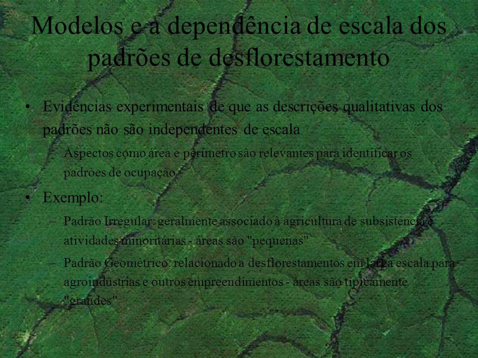 Modelos e a dependência de escala dos padrões de desflorestamento Evidências experimentais de que as descrições qualitativas dos padrões não são indep