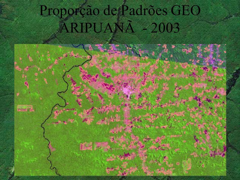 Proporção de Padrões GEO ARIPUANÃ - 2003