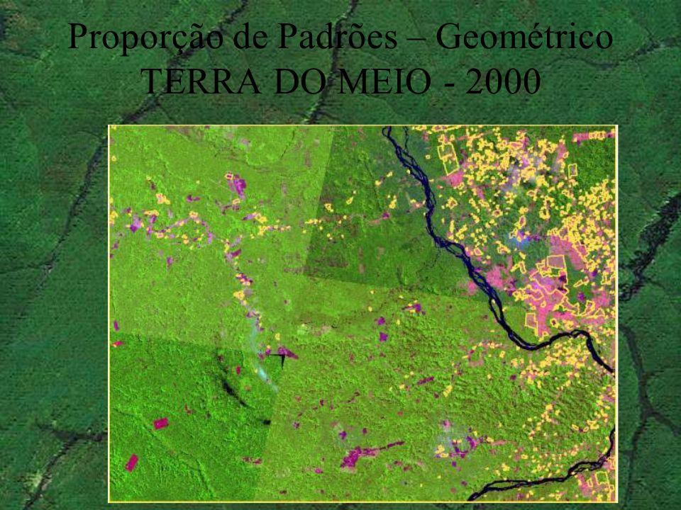 Proporção de Padrões – Geométrico TERRA DO MEIO - 2000