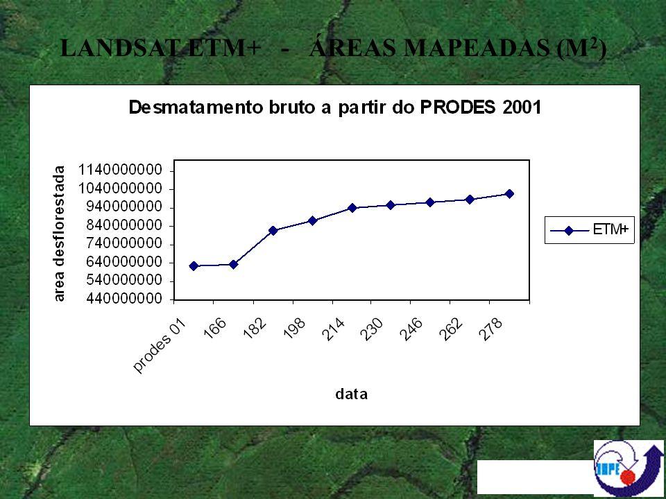 Proporção de Padrões TERRA DO MEIO - 2000