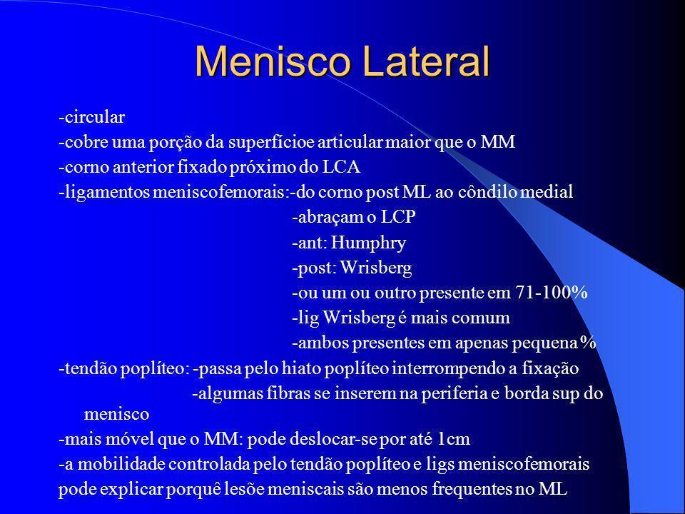 Menisco Lateral -circular -cobre uma porção da superfícioe articular maior que o MM -corno anterior fixado próximo do LCA -ligamentos meniscofemorais: