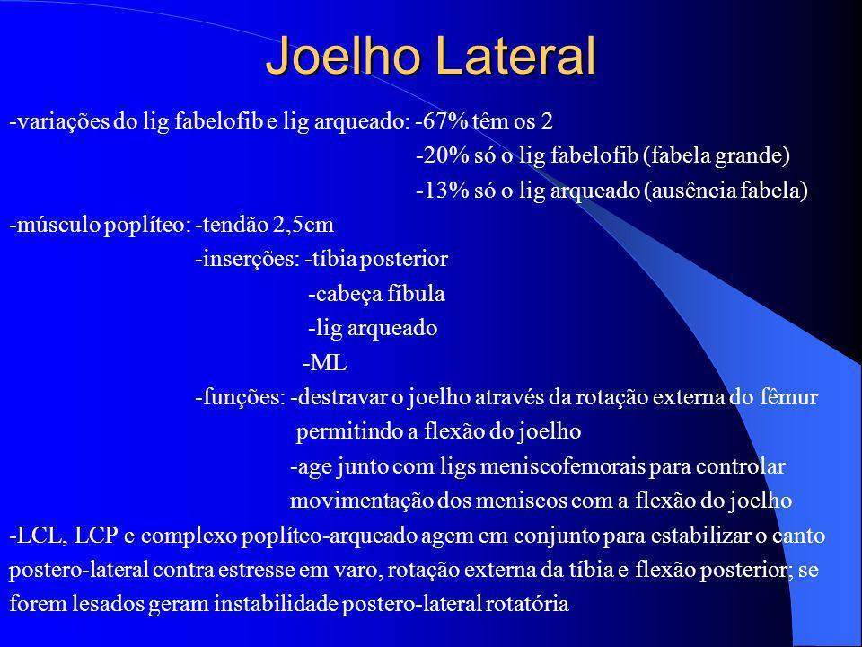 Joelho Lateral -variações do lig fabelofib e lig arqueado: -67% têm os 2 -20% só o lig fabelofib (fabela grande) -13% só o lig arqueado (ausência fabe