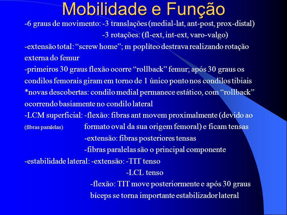 Mobilidade e Função -6 graus de movimento: -3 translações (medial-lat, ant-post, prox-distal) -3 rotações: (fl-ext, int-ext, varo-valgo) -extensão tot