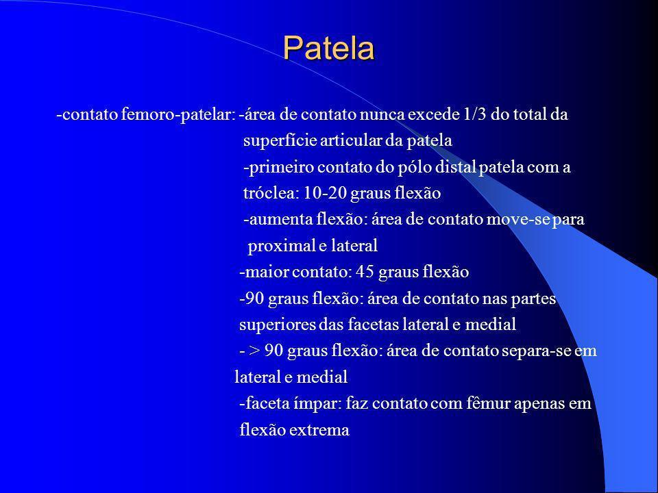 Patela -contato femoro-patelar: -área de contato nunca excede 1/3 do total da superfície articular da patela -primeiro contato do pólo distal patela c