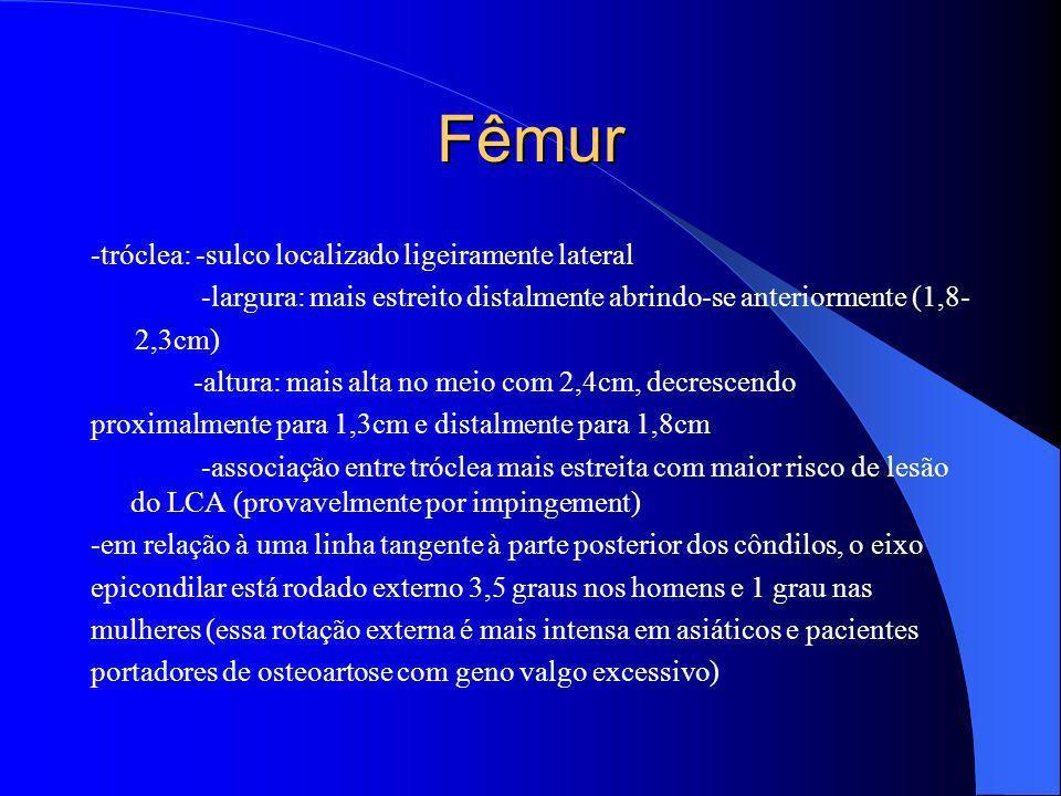 Fêmur -tróclea: -sulco localizado ligeiramente lateral -largura: mais estreito distalmente abrindo-se anteriormente (1,8- 2,3cm) -altura: mais alta no