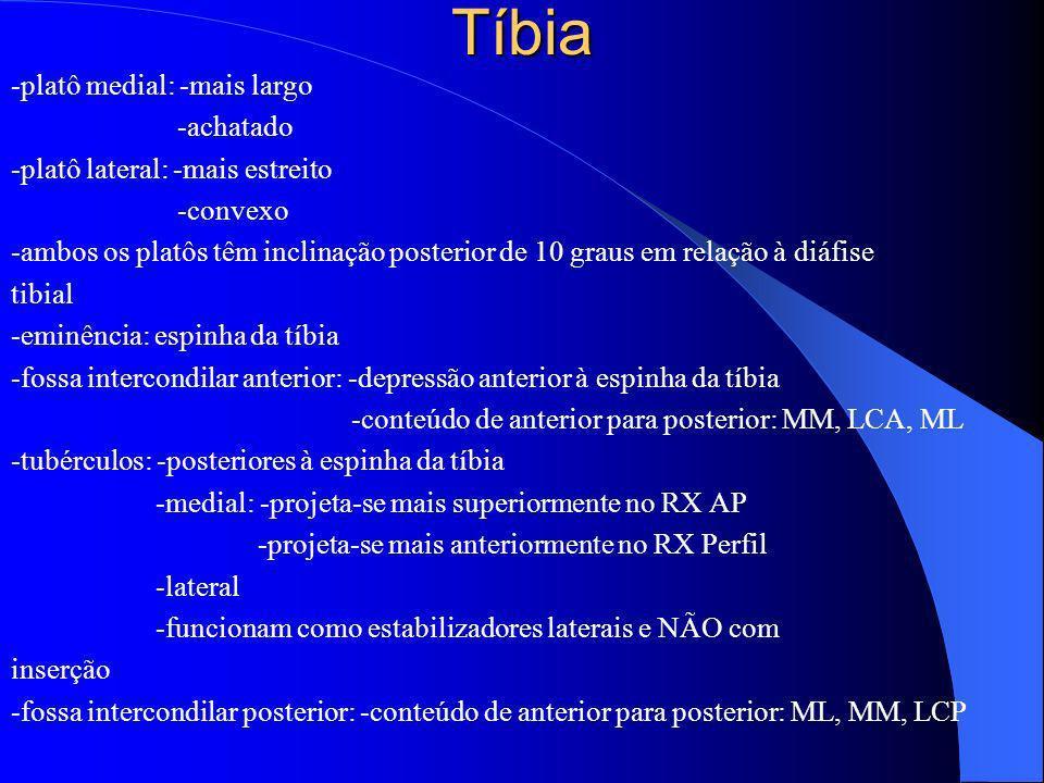 Tíbia -platô medial: -mais largo -achatado -platô lateral: -mais estreito -convexo -ambos os platôs têm inclinação posterior de 10 graus em relação à