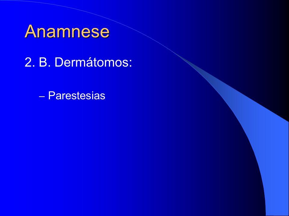 Anamnese 2. B. Dermátomos: – Parestesias