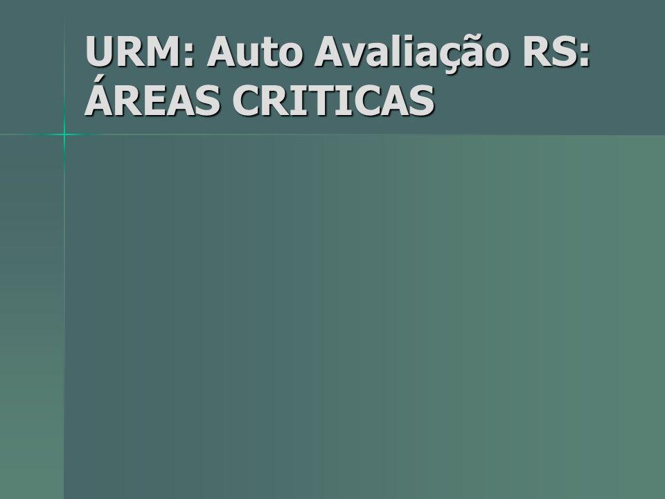 URM: Auto Avaliação RS: ÁREAS CRITICAS