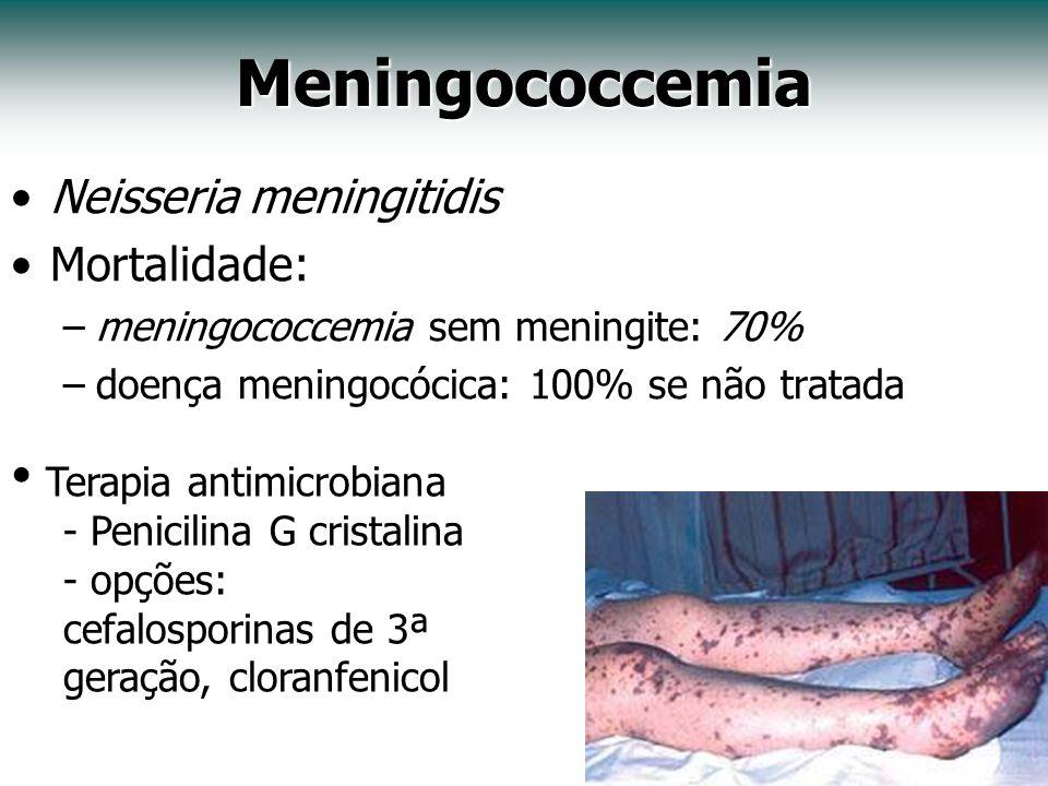 Meningococcemia Neisseria meningitidis Mortalidade: –meningococcemia sem meningite: 70% –doença meningocócica: 100% se não tratada Terapia antimicrobi