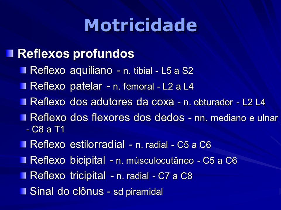 MotricidadeMotricidade Reflexos profundos Reflexos profundos Reflexo aquiliano - n. tibial - L5 a S2 Reflexo aquiliano - n. tibial - L5 a S2 Reflexo p