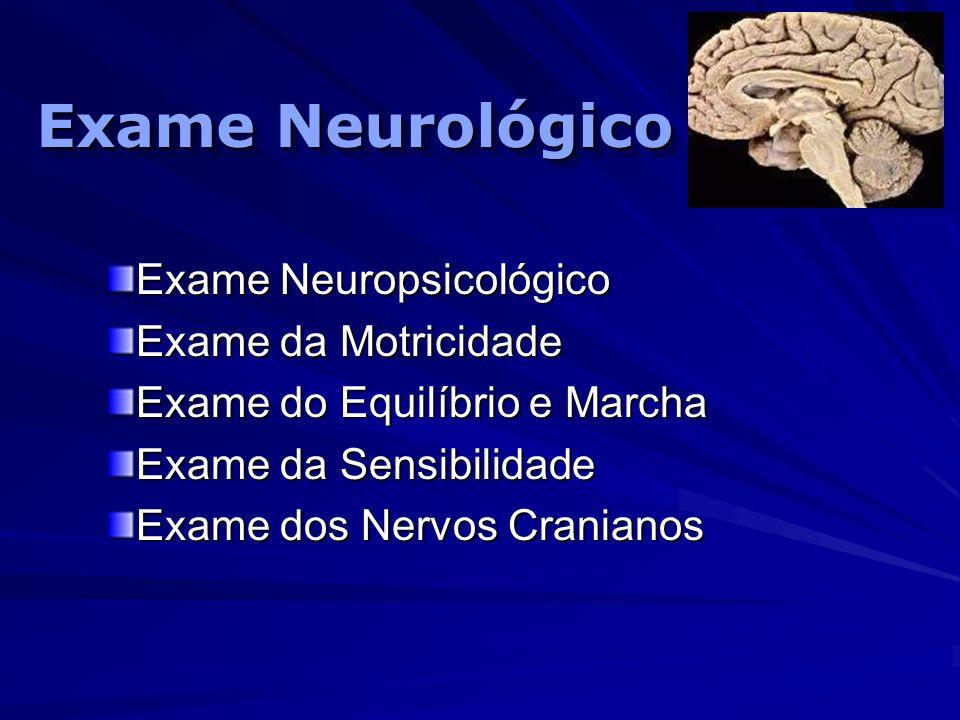 Exame Neurológico Exame Neuropsicológico Exame da Motricidade Exame do Equilíbrio e Marcha Exame da Sensibilidade Exame dos Nervos Cranianos