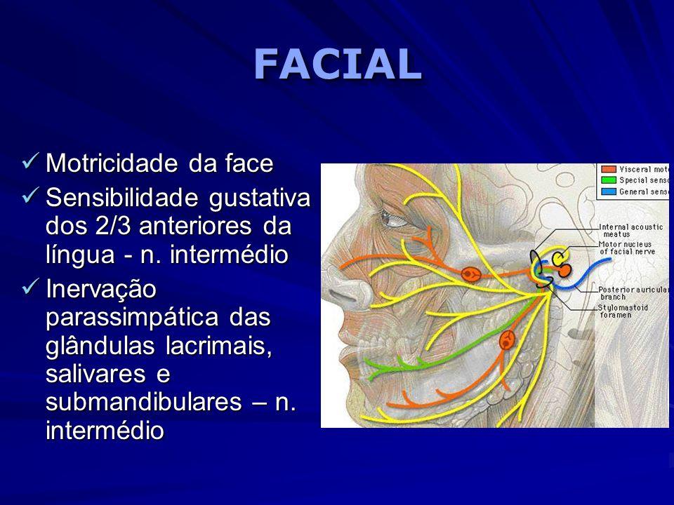 FACIALFACIAL Motricidade da face Motricidade da face Sensibilidade gustativa dos 2/3 anteriores da língua - n. intermédio Sensibilidade gustativa dos
