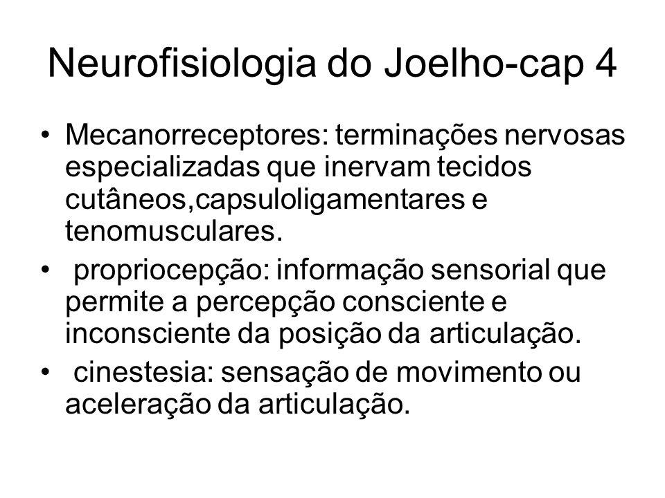 Neurofisiologia do Joelho-cap 4 Mecanorreceptores: terminações nervosas especializadas que inervam tecidos cutâneos,capsuloligamentares e tenomuscular