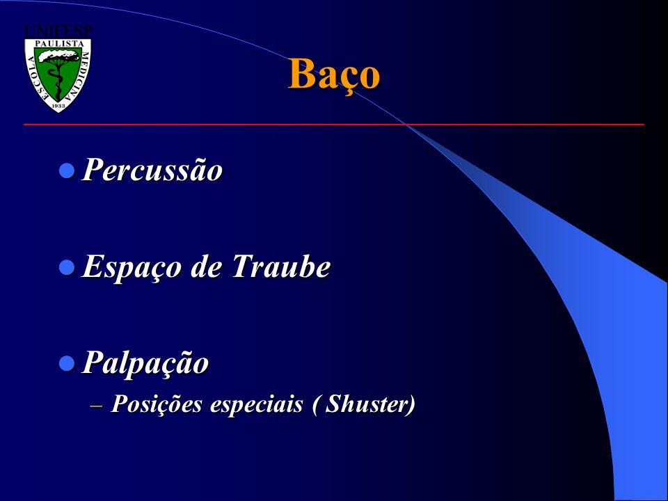 Baço Percussão Percussão Espaço de Traube Espaço de Traube Palpação Palpação – Posições especiais ( Shuster)