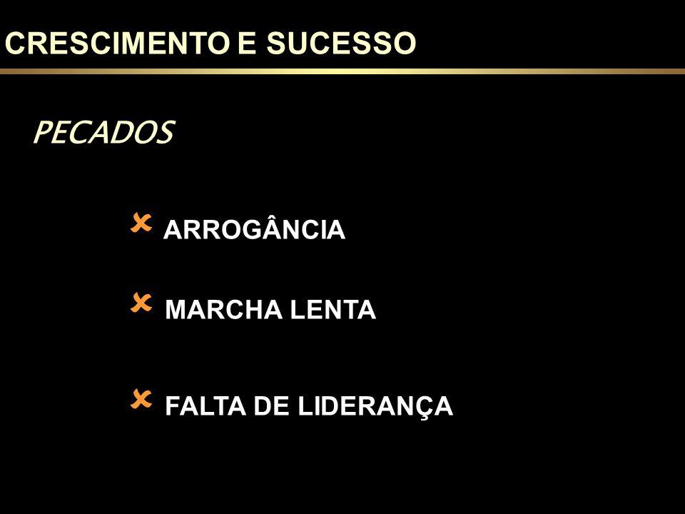 PECADOS ARROGÂNCIA MARCHA LENTA FALTA DE LIDERANÇA