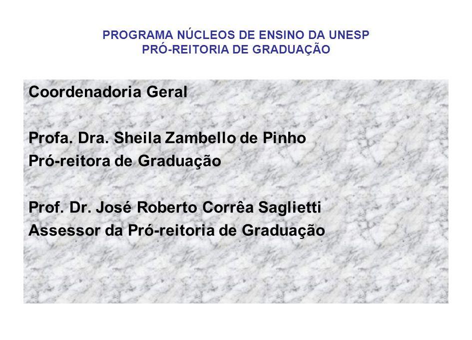PROGRAMA NÚCLEOS DE ENSINO DA UNESP PRÓ-REITORIA DE GRADUAÇÃO Coordenadoria Geral Profa. Dra. Sheila Zambello de Pinho Pró-reitora de Graduação Prof.