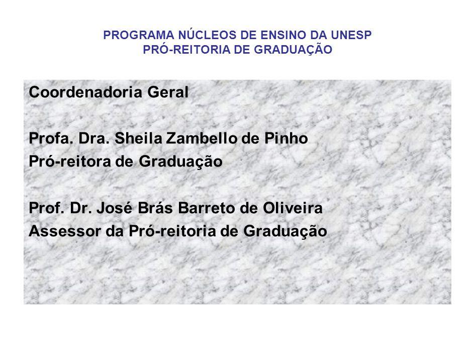 PROGRAMA NÚCLEOS DE ENSINO DA UNESP PRÓ-REITORIA DE GRADUAÇÃO Coordenadoria Geral Profa.