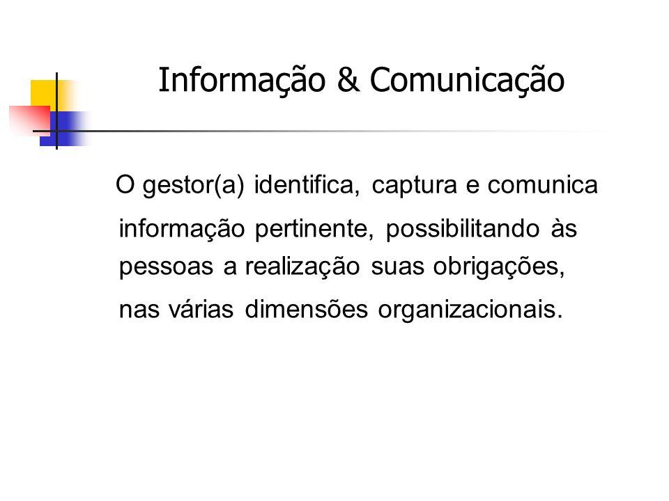 O gestor(a) identifica, captura e comunica informação pertinente, possibilitando às pessoas a realização suas obrigações, nas várias dimensões organizacionais.