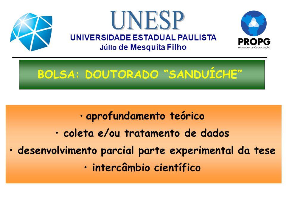 UNIVERSIDADE ESTADUAL PAULISTA Júlio de Mesquita Filho BOLSA: DOUTORADO SANDUÍCHE aprofundamento teórico coleta e/ou tratamento de dados desenvolvimen