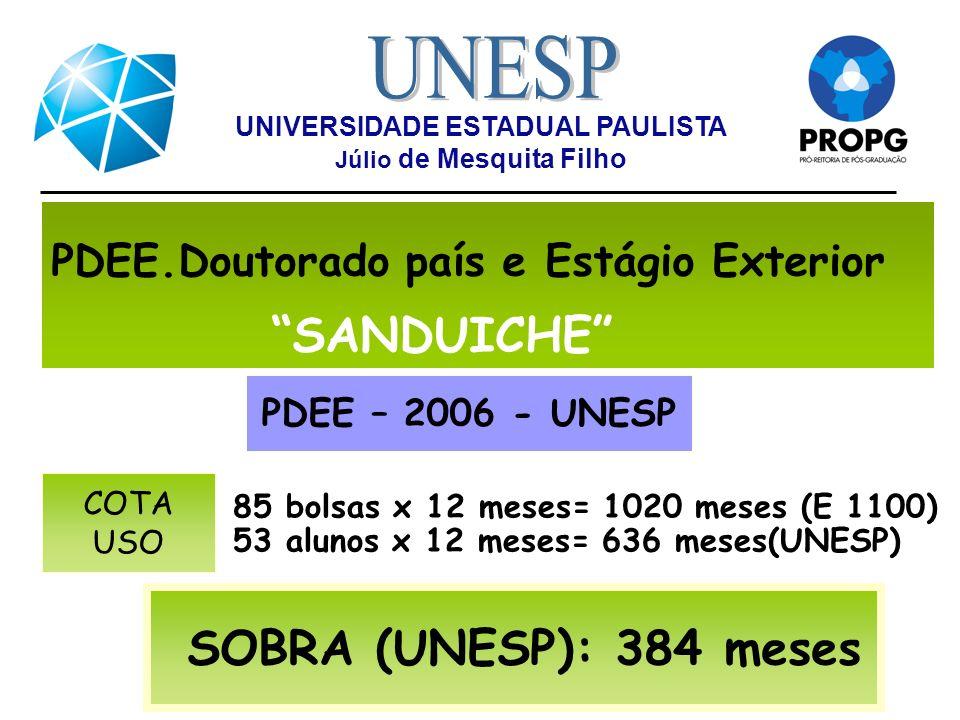PDEE.Doutorado país e Estágio Exterior SANDUICHE 85 bolsas x 12 meses= 1020 meses (E 1100) 53 alunos x 12 meses= 636 meses(UNESP) PDEE – 2006 - UNESP