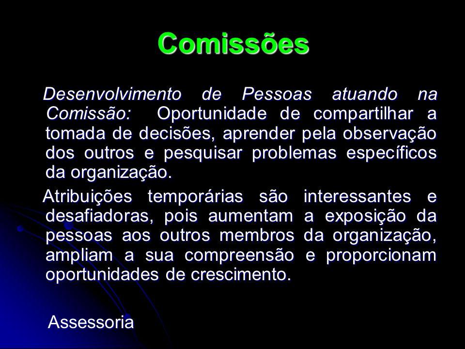 Desenvolvimento de Pessoas atuando na Comissão: Oportunidade de compartilhar a tomada de decisões, aprender pela observação dos outros e pesquisar pro