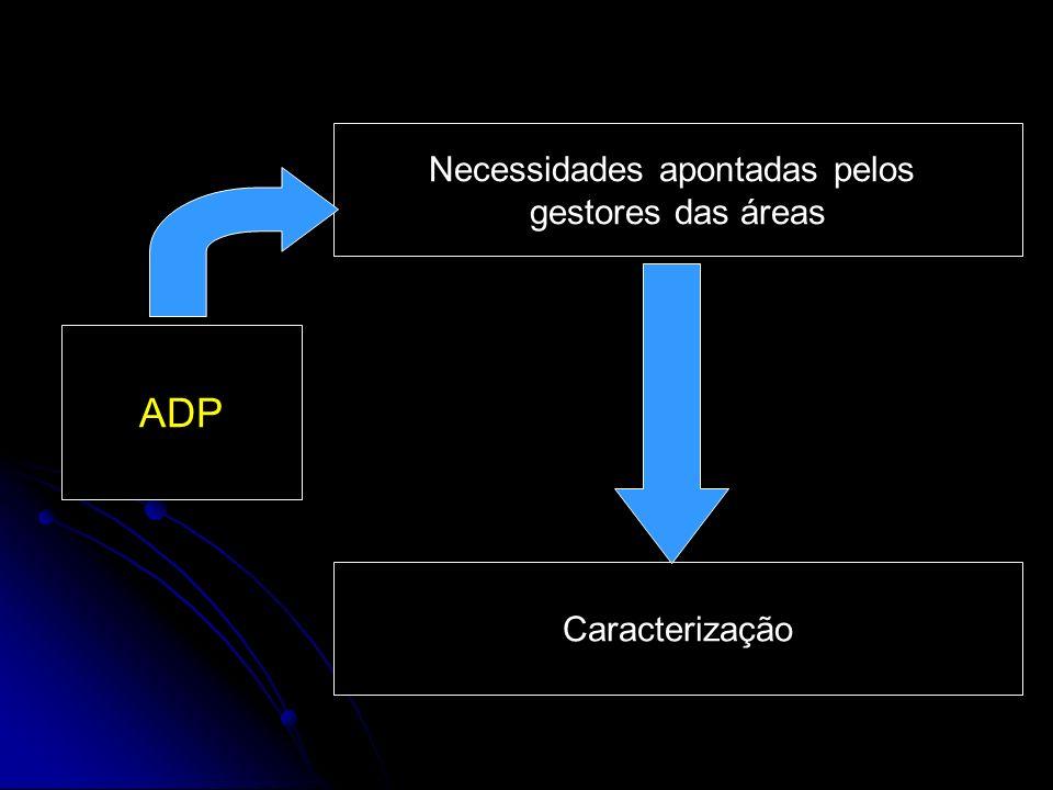 ADP Necessidades apontadas pelos gestores das áreas Caracterização